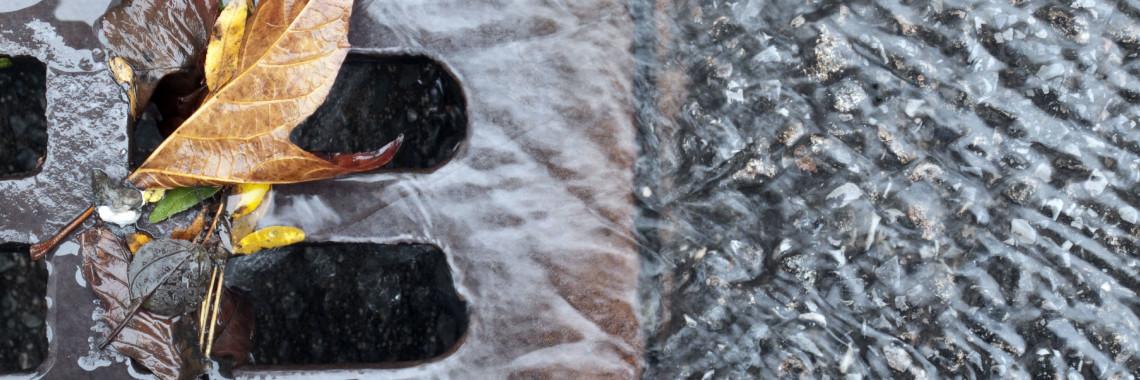 närbild av rännstensbrunn där vatten och löv rinner ner